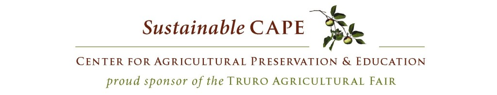 Sustainable Cape logo.cropped